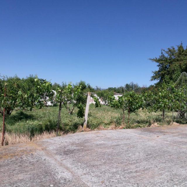 http://www.fincabienvenido.com/wp-content/uploads/2017/05/Alquiler-casa-rustica-en-Corella-Navarra-18-640x640.jpg