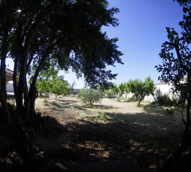 http://www.fincabienvenido.com/wp-content/uploads/2017/05/Finca-Bienvenido-Alquiler-finca-rustica-Corella-Navarra-Terreno3-640x576.jpg